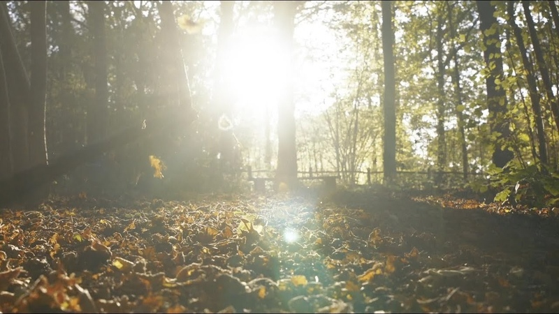 Autumn Leaves (official video) - Eva Cassidy the London Symphony Orchestra