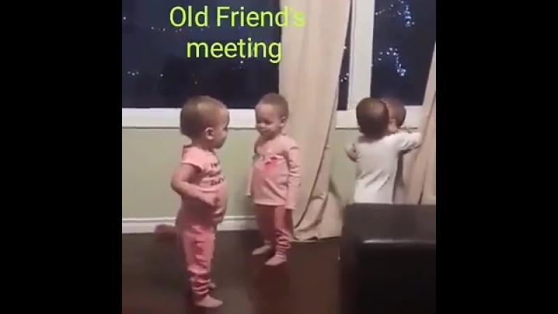 Когда с друзьями немного прибухнули