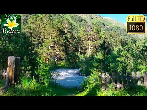 Звуки Природы, Река, Лес, Горы - 3 часа Спокойного Сна и Релаксации