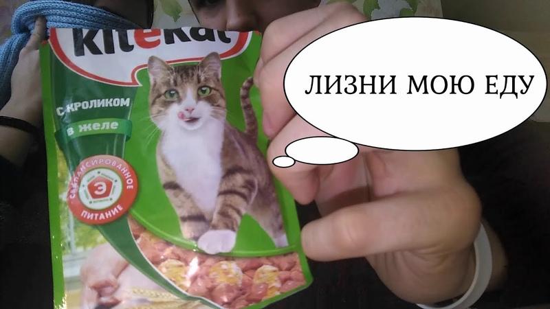ЧЕЛЕНДЖ ЛИЗНИ МОЮ ЕДУ