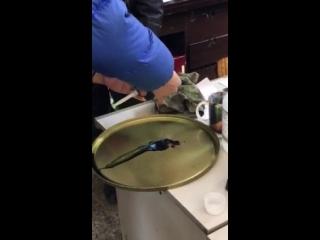 喷头维护清洗视频