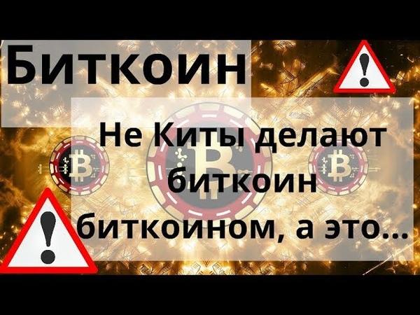 Биткоин Не Киты делают биткоин биткоином а это Курс BTC