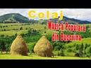 Colaj Muzica Populara Romaneasca din Bucovina