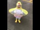 Жёлтый дождевичок