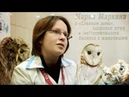 Мария Маркина о Совином доме здоровье птиц и не возможности бизнеса с животными