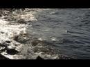 Море Азовское , волнуется солнышком ,июнь