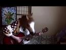 Кино (В. Цой) - Апрель│Fingerstyle guitar solo cover│.mp4