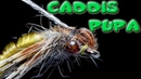 Caddis Pupa~AndyPandy~Fly Tying for Beginners
