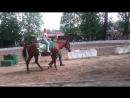 Покатушки на лошадях