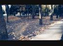 Осень в ЛНУ ИКИ