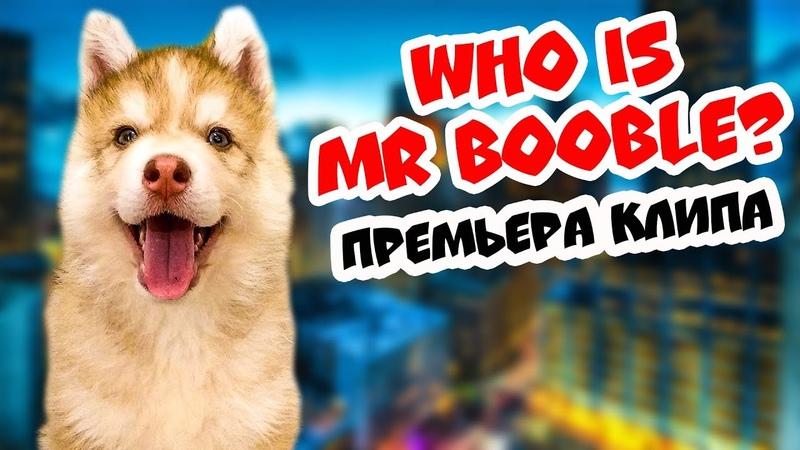 ХАСКИ БАНДИТ feat ХАСКИ БУБЛИК - КТО ТАКОЙ МИСТЕР БУБЛ? (премьера клипа) Говорящая собака