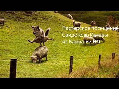 JW №1 Пастырское посещение Свидетелю Иеговы из Камчатки Отношение к ВиБРу- это святое