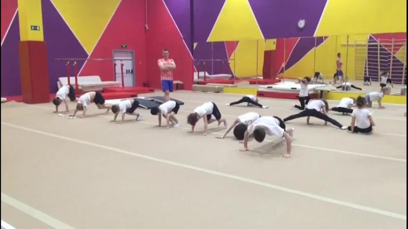 Тренировка у мальчиков, спортивная гимнастика