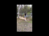 Деревенские панки танцуют лизгинку на могилах своих родственников.