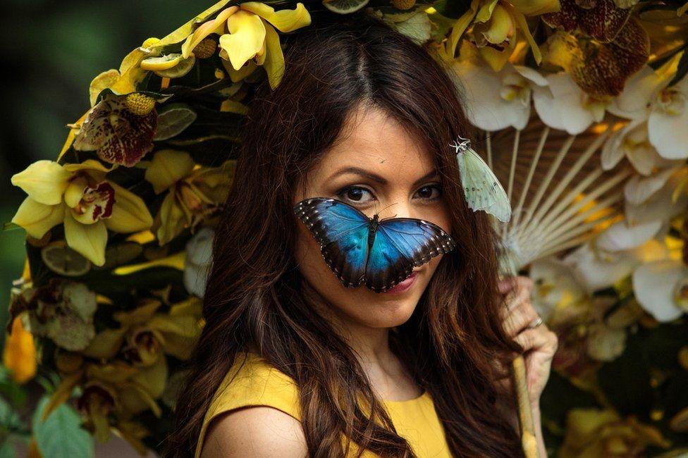Бабочка на лице модели Джесси Баркер