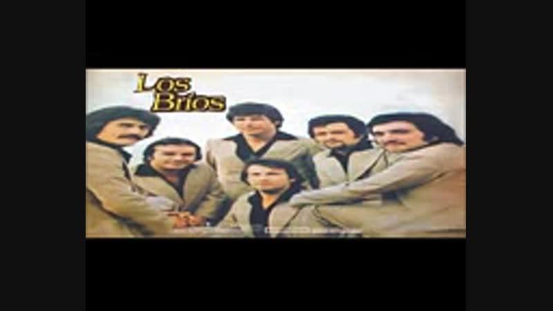 LOS BRIOS - 15 SUPER EXITOS