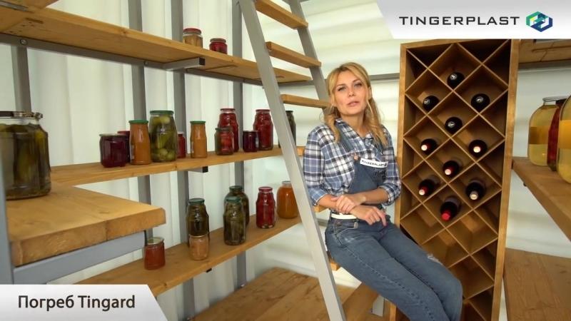 Погреб Tingard_Тингард