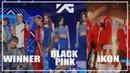 WINNERBLACK PINKiKON SPECIAL★2016 to 2018 OCT(58mis Stage Compilation)