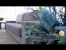 Презентация дивана-кровати ЛАЙФ