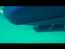 Голубые озера ♦ Александровск ♦ Карьер известняк.mp4