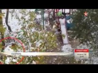 Стая бездомных собак атаковала малышей на детской площадке в Сызрани.