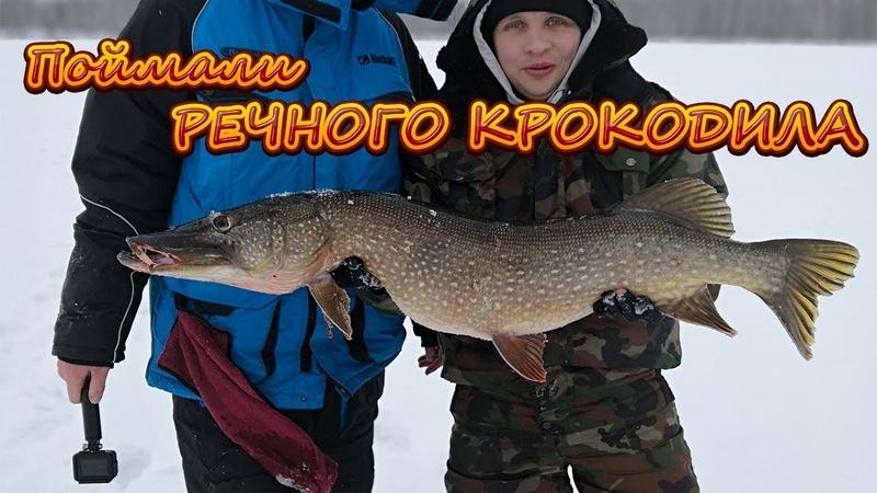 ГИГАНТСКАЯ щука РЫБАЛКА на ЖЕРЛИЦЫ РЕКОРДНАЯ Рыба ДОКТОР БОБРОВСКИЙ