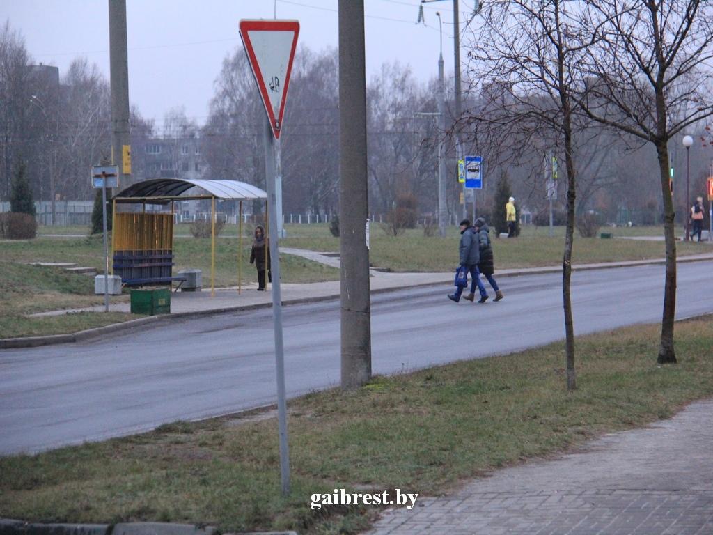 Конфликт пешеходов и водителей... ГАИ проверила, пропускают ли они друг друга