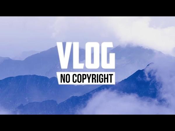Dizaro Mermaid Vlog No Copyright Music