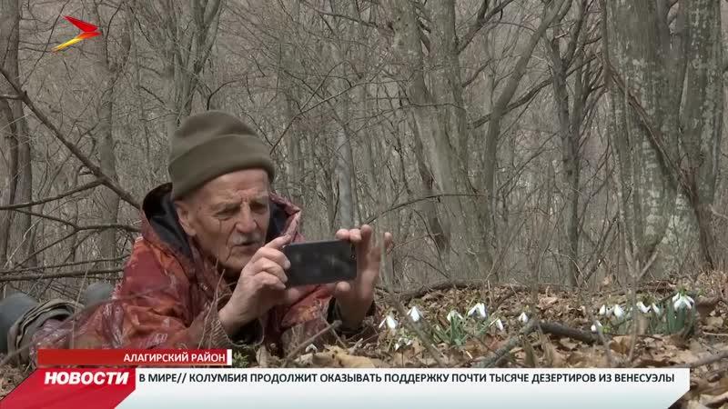 В Северной Осетии черемша отступает в горные районы