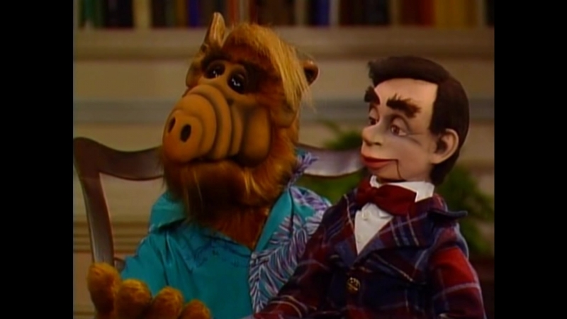 Alf Quote Season 2 Episode 23_Альф учится