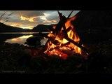 Звуки костра шум леса видео HD relax bonfire Sounds of nature