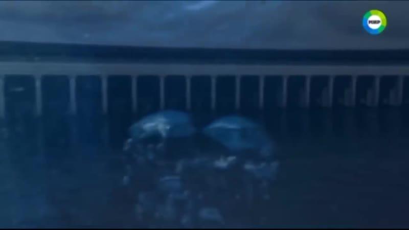 Неожиданно ОНИ существуют найдены разумные подводные цивилизации