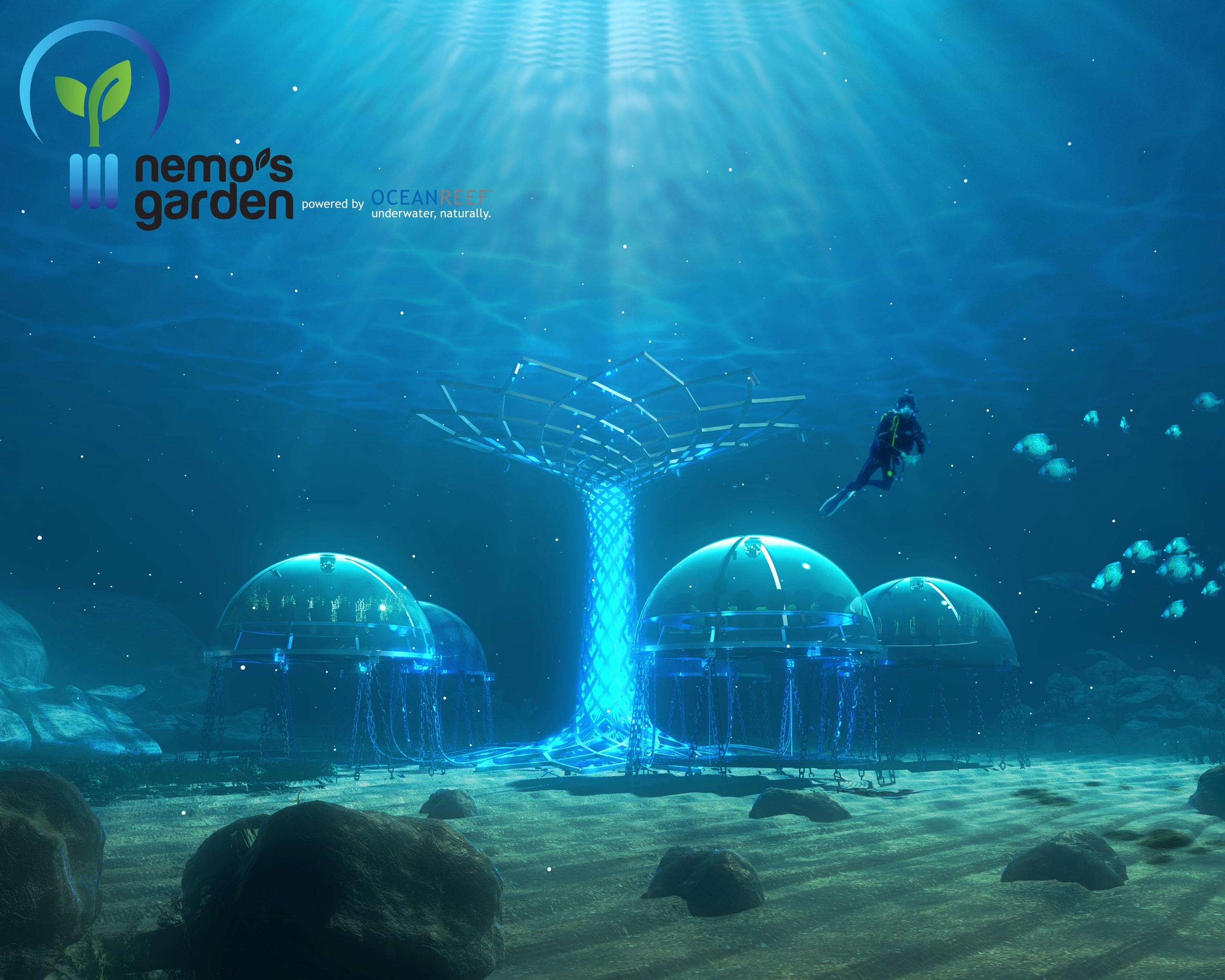 Сад Немо подводные культивации для увеличения производства продуктов питания Sergio Gemberini, генеральный директор итальянской компании Ocean Reef, создал Nemo Garden. Владелец двух компаний, занимающийся подводным плаванием в Италии и Калифорнии, во время отпуска в Ноли, придумал интересную идею выращивания растений в море. У Серхио Гамберини возникла идея сада под водой, он мечтал превратить подводное плавание в более интерактивную деятельность. Его первоначальный план состоял в том, чтобы закрепить шар гибкого материала, содержащий вазу с заводом до морского дна. К его удивлению, завод не умер и вырос. Следующим шагом было применить тот же метод, используя семена, которые прорастали в течение 36 часов. На участке площадью 15 м2 в настоящее время имеется семь биосфер, каждая из которых имеет размер комнаты. В каждой сфере насчитывается около 60 растений, питаемых гидропонными инструментами иорошаемых гравитационными системами. Это базилик, чеснок, редис, капуста и клубника, просто чтобы привести некоторые примеры. Специалисты по дайвингу склонны утверждать, что эти растения не будут иметь тех же характеристик, что и на земле. Sergio Gemberini утверждает, что «море самодостаточное, свободный инкубатор». В заливе Ноли Noli температура воды довольно стабильна и, следовательно, предлагает растениям постоянный тепловое питание. Со своей стороны, вода моря действует как фильтр, увлажняя растительный покров. В результате растения, выращиваемые под водой, являются более здоровыми и более качественными. Аромат и вкус более интенсивны, чем у растений, выращенных на Земле. Биосферы - идеальные теплицы, так как никакие паразиты не могут их достичь. Поэтому отпадает необходимость в пестицидах или других химических веществах. Естественное испарение обеспечивает испарение пресной воды внутри сфер, позволяет систематически орошать растения. Кроме того, эксперименты показали, что эти растения растут быстрее, чем их терригенные коллеги. Серхио Гамберини работает с экспертами в обл