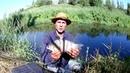 Что можно поймать на поплавочную удочку, в маленькой речке.