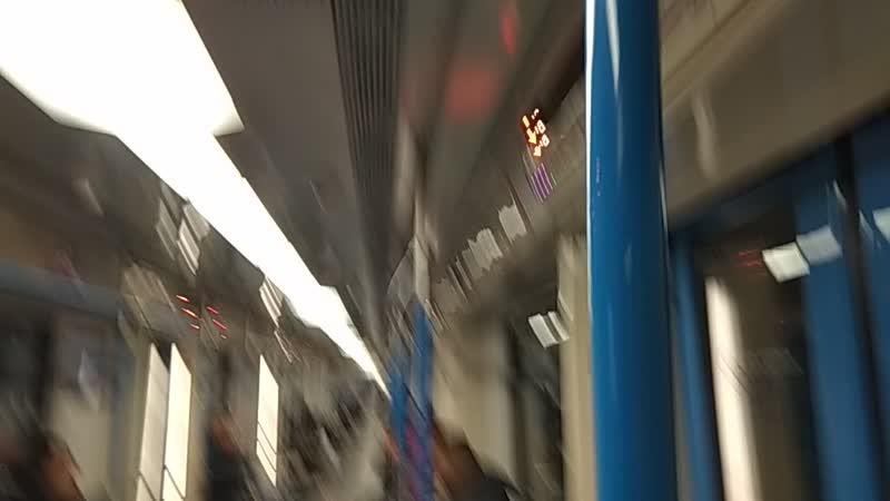 14.12.18 22ч5мин. С гуслями по вагонам метро.