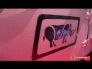 2017 Jeep Wrangler with Rhino Linings Protection - Walkaround - 2017 SEMA - YouTube