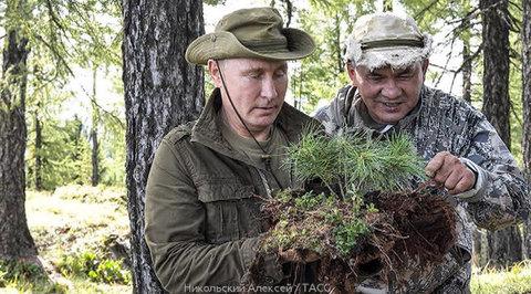 Вести Ru Выходные на природе Путин Шойгу и Бортников прогулялись по тувинской тайге
