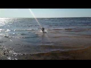 Бруня. Залив. Кайф