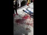 Latin Man Bleeds Profusely on Sidewalk in S