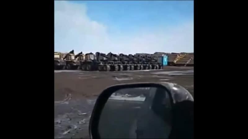 Сибирский лес варварски вырубают китайцы и вывозят из России