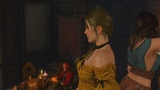 15piecesofflare_ - The Witcher 3 Wild Hunt (Часть 15)