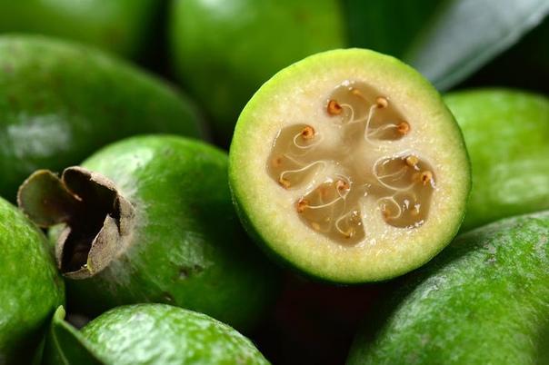 фейхоа - что за пользу приносит организму человека кусты фейхоа обнаружил в 1815 году в бразилии немецкий ботаник фридрих зелло, а 75 лет спустя их завезли в европу. появление первых плантаций