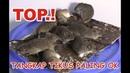 Jebakan Tikus - Membuat Perangkap Dengan Lem Tikus Ampuh