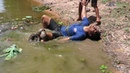 Real Anaconda attack on human While Swimming in the river - Two Brother Vs Giant Anaconda