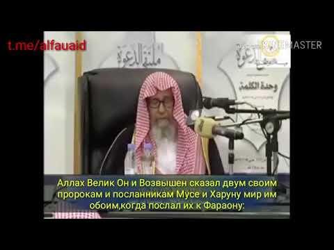 Шейх Салих аль Фаузан