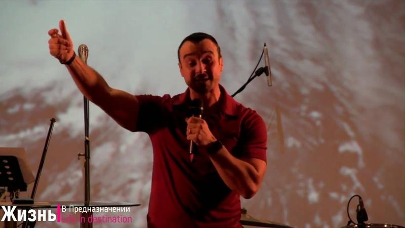 Андрей Шаповалов - Освободись от дятлов
