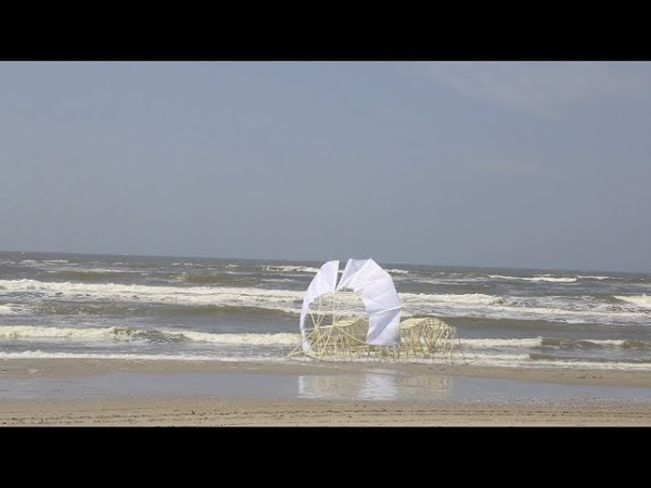 STRANDBEEST EVOLUTION 2018