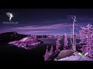 Ilya Fly - This Beautiful World (Original Mix) [Pegasus Music]