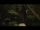 Закон джунглей (2016) WEB-DLRip 1080p | GreenРай Studio