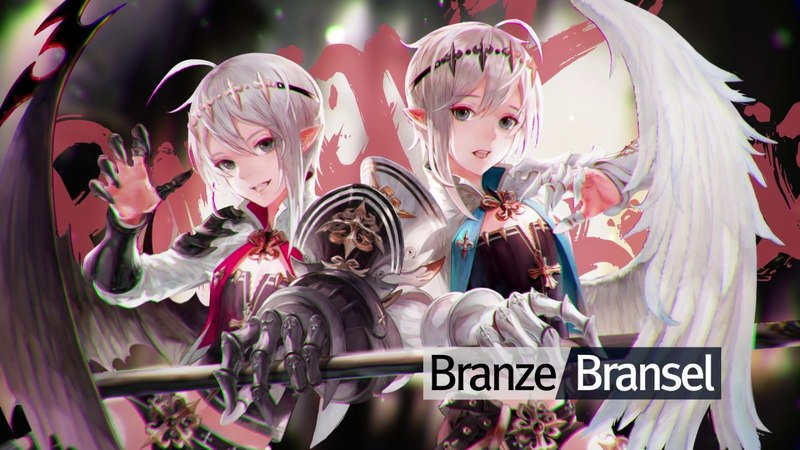 Special Hero Dark Knights Branze & Bransel!